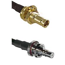 1.0/2.3 Female Bulkhead On LMR100 to QMA Female Bulkhead Cable Assembly