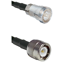 7/16 Din Female on LMR-195-UF UltraFlex to C Male Cable Assembly