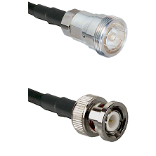7/16 Din Female Connector On LMR-240UF UltraFlex To BNC Male Connector Cable Assembly