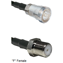 7/16 Din Female Connector On LMR-240UF UltraFlex To F Female Connector Cable Assembly