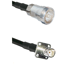 7/16 Din Female on RG142 to BNC 4 Hole Female Cable Assembly