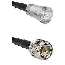 7/16 Din Female on RG142 to Mini-UHF Male Cable Assembly