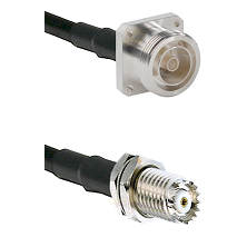 7/16 4 Hole Female Connector On LMR-240UF UltraFlex To Mini-UHF Female Bulkhead Connector Coaxial Ca