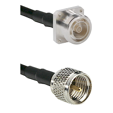 7/16 4 Hole Female Connector On LMR-240UF UltraFlex To Mini-UHF Male Connector Coaxial Cable Assembl
