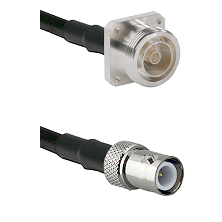 7/16 4 Hole Female Connector On LMR-240UF UltraFlex To BNC Reverse Polarity Female Connector Coaxial