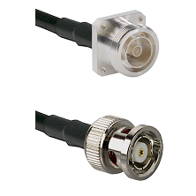 7/16 4 Hole Female Connector On LMR-240UF UltraFlex To BNC Reverse Polarity Male Connector Coaxial C