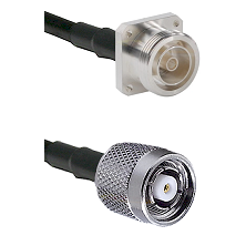 7/16 4 Hole Female Connector On LMR-240UF UltraFlex To TNC Reverse Polarity Male Connector Coaxial C