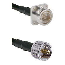 7/16 4 Hole Female Connector On LMR-240UF UltraFlex To UHF Male Connector Cable Assembly