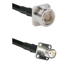 7/16 4 Hole Female on RG58C/U to BNC 4 Hole Female Cable Assembly