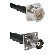 7/16 4 Hole Female on RG58C/U to C 4 Hole Female Cable Assembly