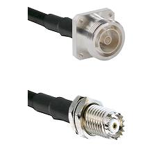 7/16 4 Hole Female on RG58C/U to Mini-UHF Female Cable Assembly
