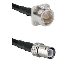 7/16 4 Hole Female on RG58C/U to BNC Reverse Polarity Female Cable Assembly