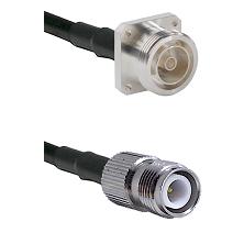 7/16 4 Hole Female on RG58C/U to TNC Reverse Polarity Female Cable Assembly