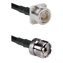 7/16 4 Hole Female on RG58C/U to UHF Female Cable Assembly