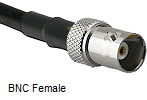 BNC Female