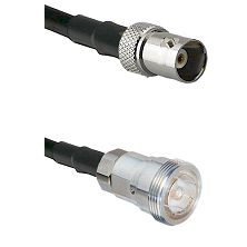 BNC Female on RG142 to 7/16 Din Female Cable Assembly