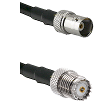 BNC Female on RG142 to Mini-UHF Female Cable Assembly