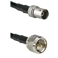 BNC Female on RG142 to Mini-UHF Male Cable Assembly