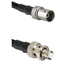 BNC Female on RG58C/U to SHV Plug Cable Assembly