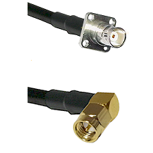 BNC 4 Hole Female on LMR-195-UF UltraFlex to SMA Right Angle Male Cable Assembly