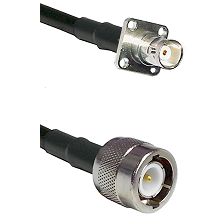 BNC 4 Hole Female on LMR200 UltraFlex to C Male Cable Assembly