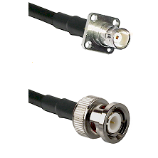 BNC 4 Hole Female on RG142 to BNC Male Cable Assembly