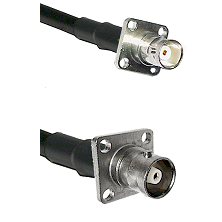 BNC 4 Hole Female on RG142 to C 4 Hole Female Cable Assembly