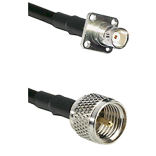 BNC 4 Hole Female on RG142 to Mini-UHF Male Cable Assembly