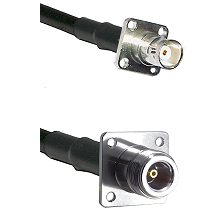 BNC 4 Hole Female on RG142 to N 4 Hole Female Cable Assembly