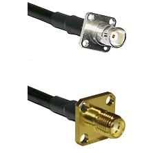 BNC 4 Hole Female on RG400 to SMA 4 Hole Female Cable Assembly