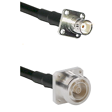 BNC 4 Hole Female on RG58C/U to 7/16 4 Hole Female Cable Assembly