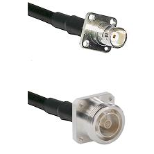 BNC 4 Hole Female on RG58C/U to 7/16 4 Hole Female Cable Assembly
