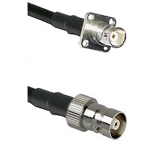 BNC 4 Hole Female on RG58C/U to C Female Cable Assembly