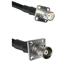 BNC 4 Hole Female on RG58C/U to C 4 Hole Female Cable Assembly