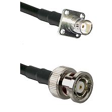 BNC 4 Hole Female on RG58C/U to BNC Reverse Polarity Male Cable Assembly