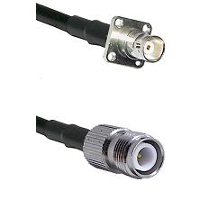 BNC 4 Hole Female on RG58C/U to TNC Reverse Polarity Female Cable Assembly