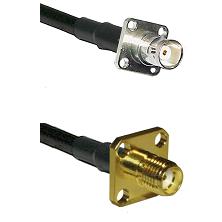 BNC 4 Hole Female on RG58C/U to SMA 4 Hole Female Cable Assembly