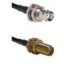 BNC Female Bulkhead on LMR240 Ultra Flex to SMA Reverse Polarity Female Bulkhead Coaxial Cable Assem