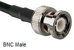 BNC Male