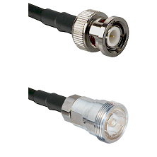 BNC Male Connector On LMR-240UF UltraFlex To 7/16 Din Female Connector Cable Assembly
