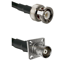 BNC Male Connector On LMR-240UF UltraFlex To C 4 Hole Female Connector Cable Assembly