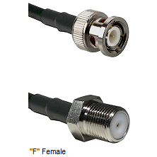 BNC Male Connector On LMR-240UF UltraFlex To F Female Connector Cable Assembly