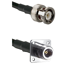 BNC Male Connector On LMR-240UF UltraFlex To N 4 Hole Female Connector Cable Assembly