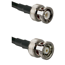 BNC Male Connector On LMR-240UF UltraFlex To BNC Reverse Polarity Male Connector Coaxial Cable Assem