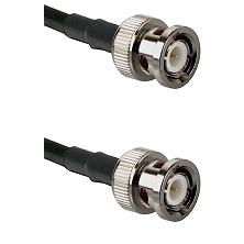 BNC Male Plug on RG196A/U to SMA Male Plug 36 inches long Coaxial / RF cable