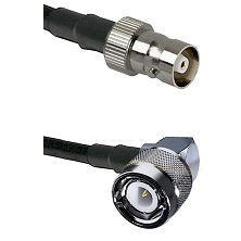 C Female on Belden 83242 RG142 to C Right Angle Male Cable Assembly
