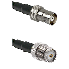 C Female on LMR100 to Mini-UHF Female Cable Assembly