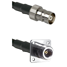 C Female on LMR100 to N 4 Hole Female Cable Assembly