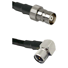 C Female on LMR100 to Mini-UHF Right Angle Male Cable Assembly