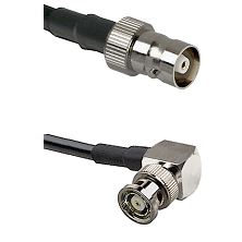 C Female on LMR100 to BNC Reverse Polarity Right Angle Male Cable Assembly